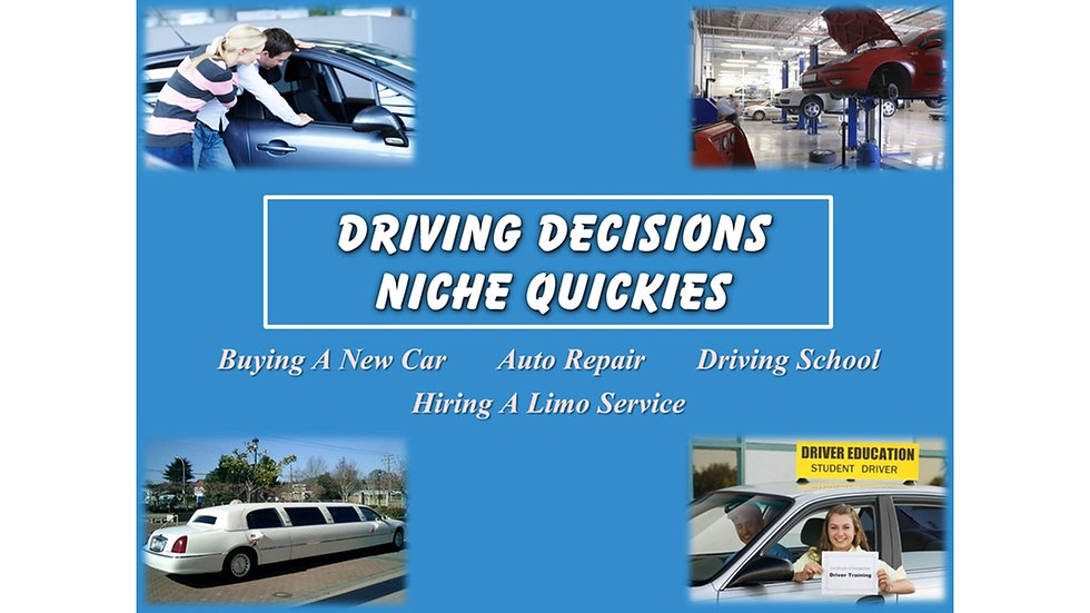 Driving Decisions Niche Quickies