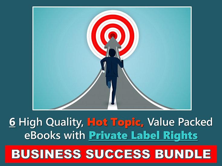 Business Success PLR eBook Bundle