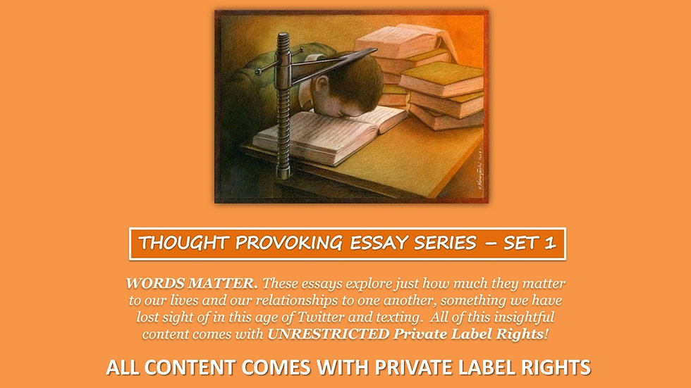 Thought Provoking PLR Essay Collection - Set 1