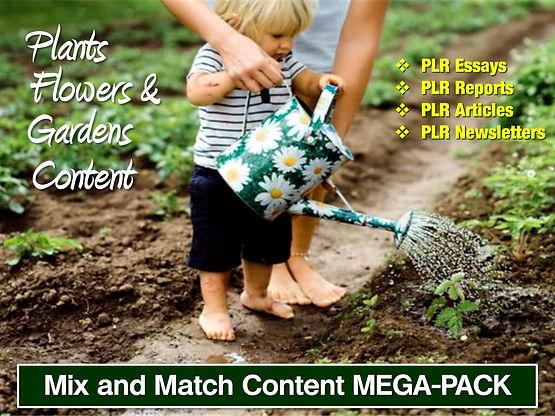 GardenMM-02.JPG