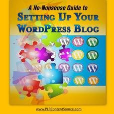 SETTING UP YOUR WORDPRESS BLOG REPORT