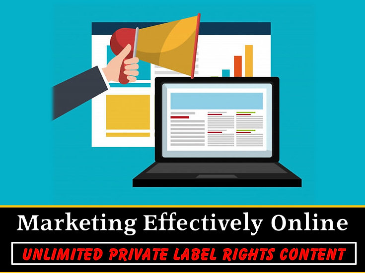 Marketing Effectively Online Unlimited PLR Pack