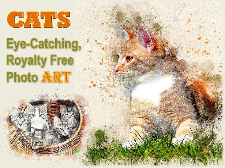 CATS Photo Art Collection