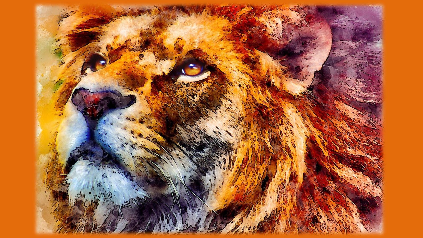 LionPAQ-10.JPG