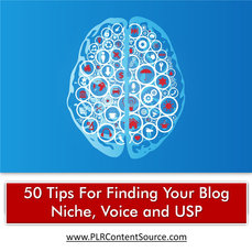 FINDING YOUR BLOG NICHE, VOICE AND USP TIPS