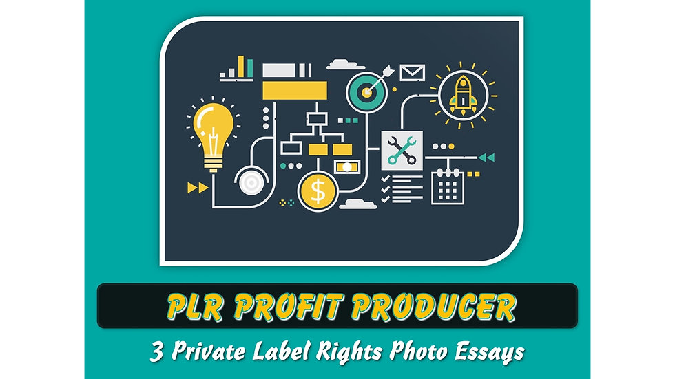 PLR Profit Producer Private Label Content Pack