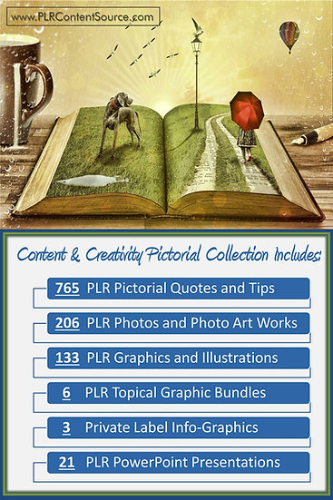 Content and Creativity Pictorial Portfolios