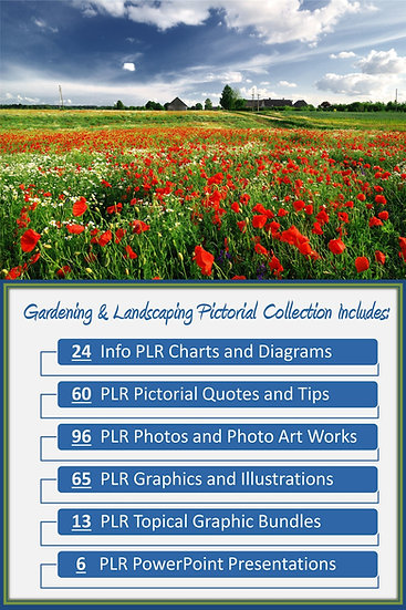 Gardening and Landscaping Pictorial Portfolios