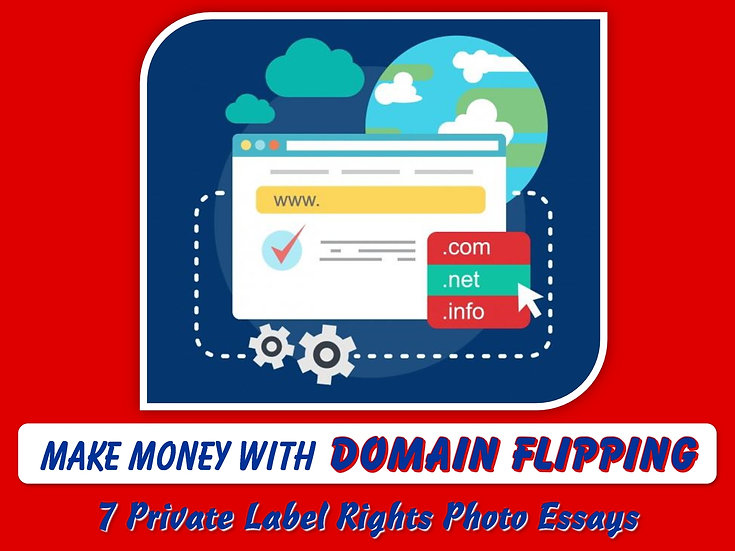 How to Make Money with Domain Flipping Private Label Content Pack
