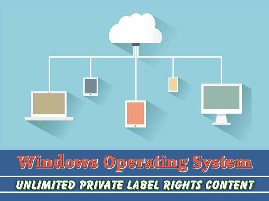 Windows Operating System PLR