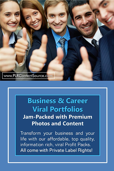 Business and Career Niche Domination Pack