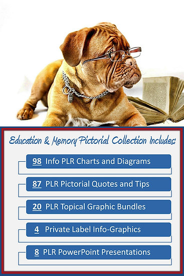 Education and Memory Pictorial Portfolios