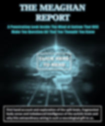MeaghanReportCover-READ.jpg