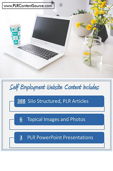 Self Employment and WAH Turnkey Content Sites
