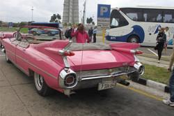 classic-cars- 06