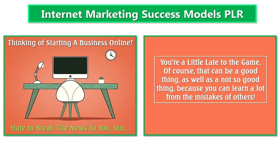 Internet Marketing Success Models PLR