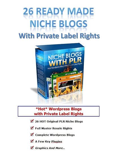 26 Ready Made Niche Blogs