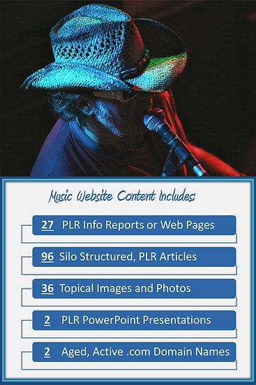 Music Turnkey Content Sites