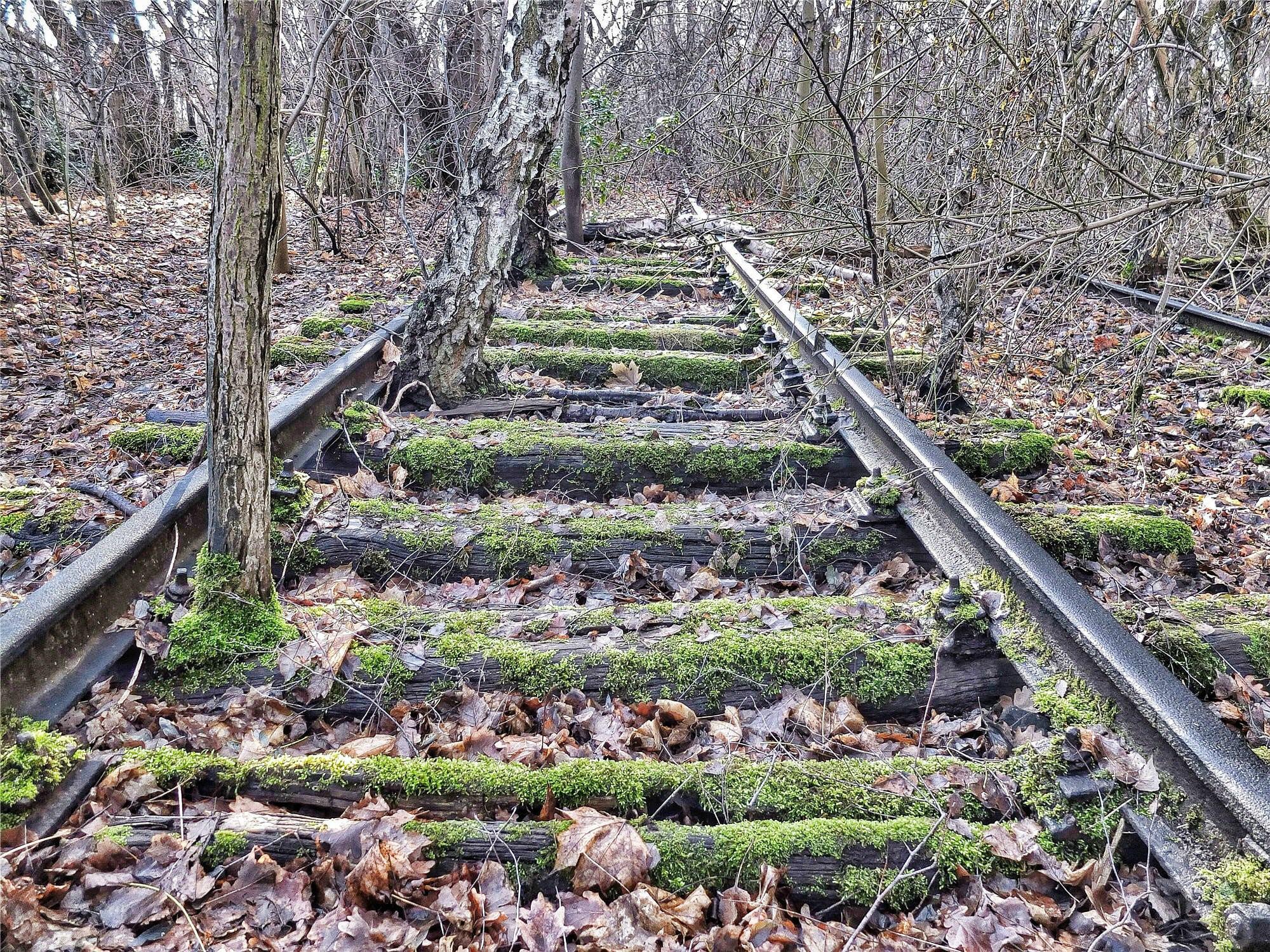Railroads-21