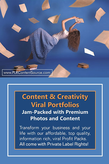 Content and Creativity Niche Domination Pack