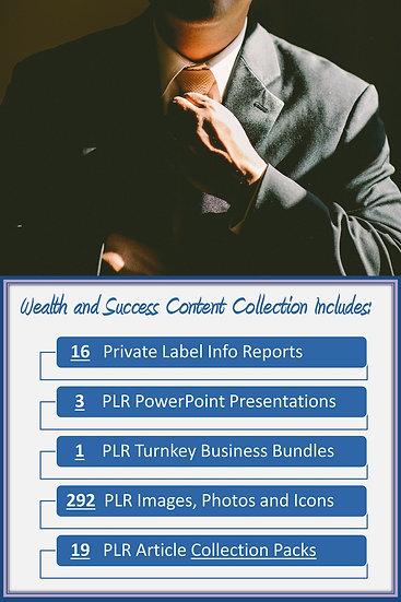 Wealth and Success Content Portfolios