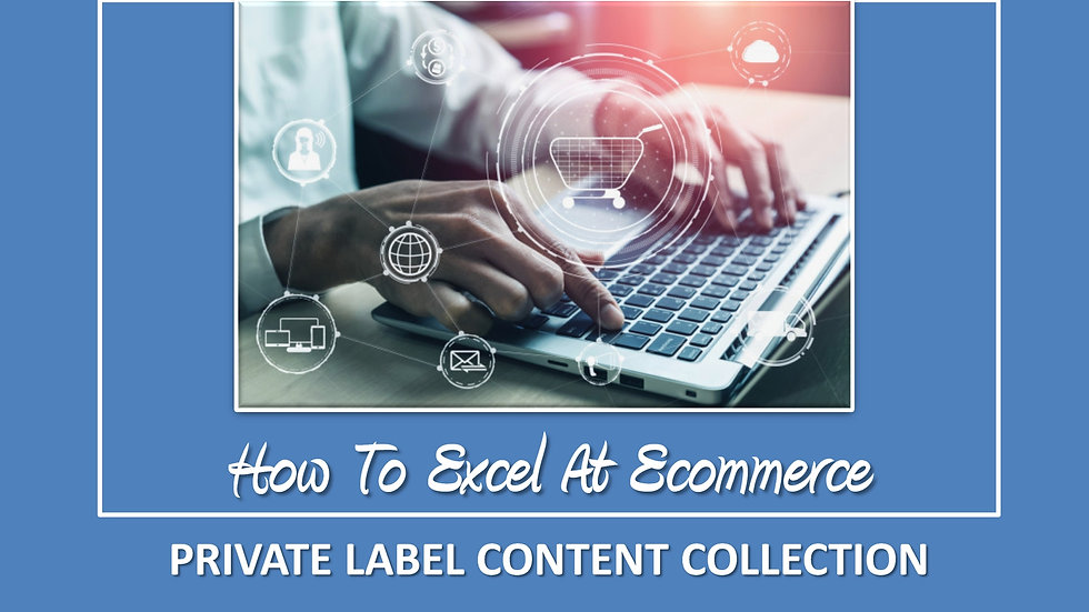How To Excel At Ecommerce PLR Pack