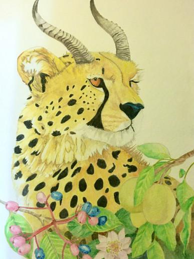 Predator to Prey: Cheetah