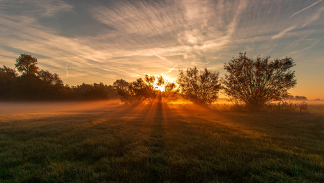 landscape sunrise gold 2.jpg