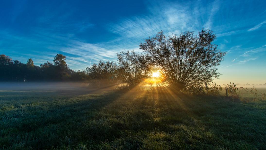 landscape sunrise gold 3.jpg
