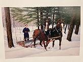 2 horses and sled.jpg