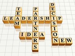 Synaptik Group, Business Strategy, Consulting, Business Consulting, Leadership, Partnership, Vision
