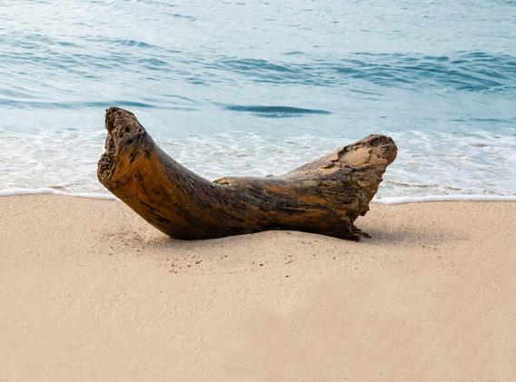 Playa Detras del Morro