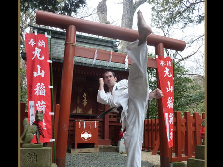Kyokushin: a complete guide