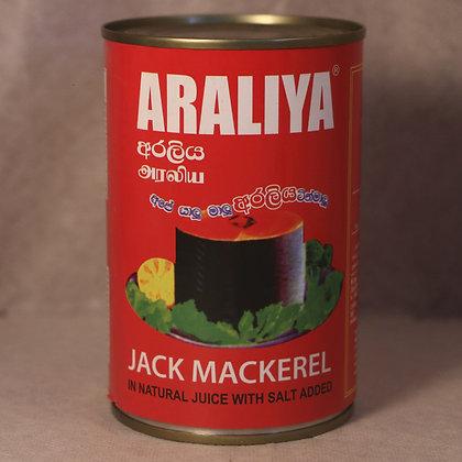 Araliya Mackrel Araliya China