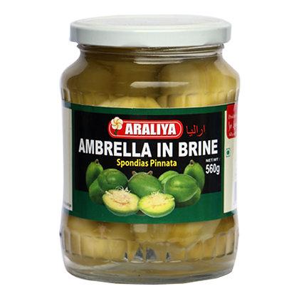Araliya Ambarella In Brine