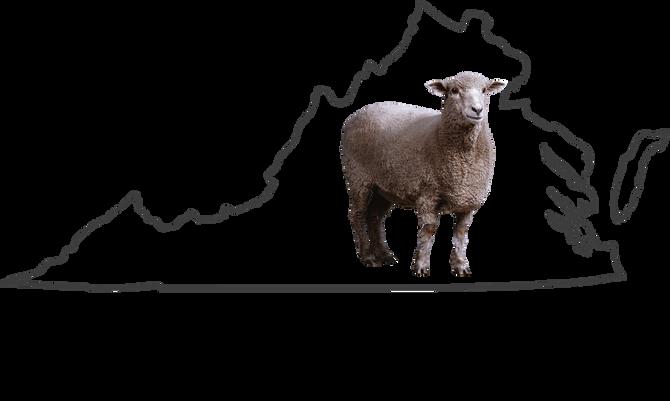 2018 Virginia Shepherds' Symposium