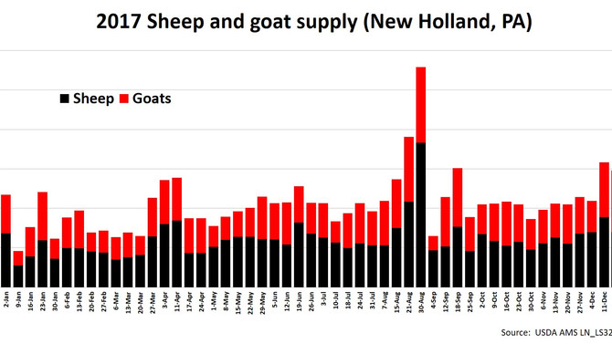 More than 218,000 sheep/goats sold