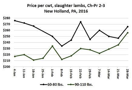2014 lamb prices