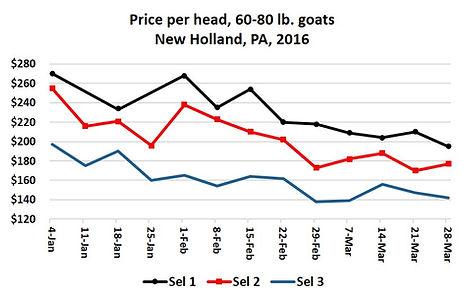 2014 Goat Prices