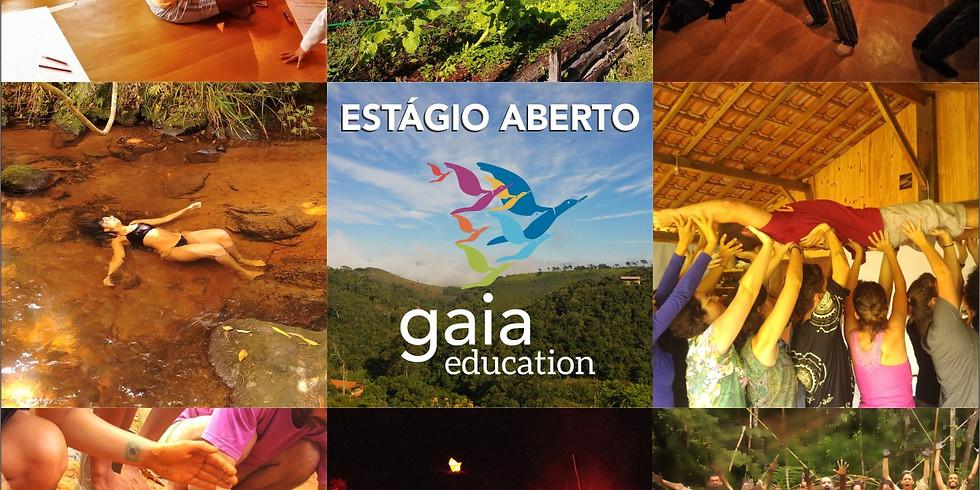 Estágio Aberto Gaia Education