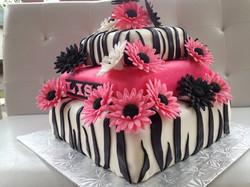Zebra Stripe Delight