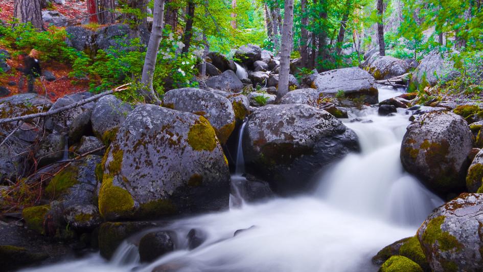 Aspin+Creek_20110711_0003.jpg
