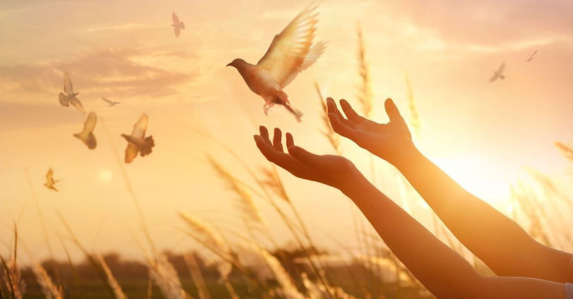 lifted-hands-dove-sunset-gettyimages-ipo