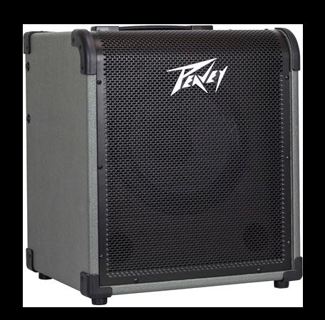MAX -100 Peavey Bass Amp