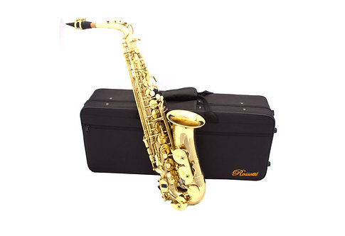 Rossetti Alto Saxophone Outfit