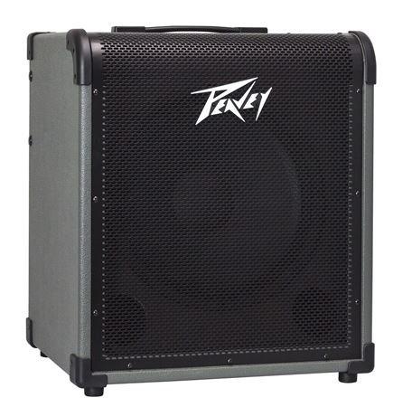 MAX - 150 Peavey Bass Amp