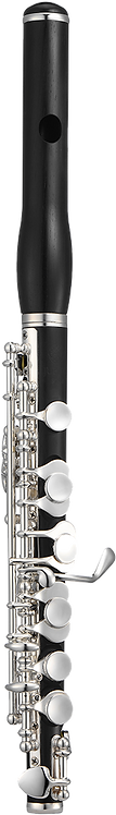 JUPITER  1100 Series JPC1100E Piccolo