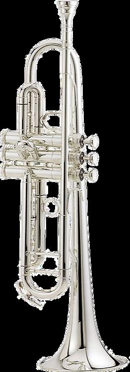 BARKOT Intermediate Trumpet Outfit