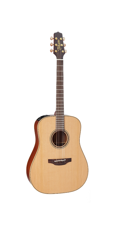 P3D Takamine Acoustic Guitar