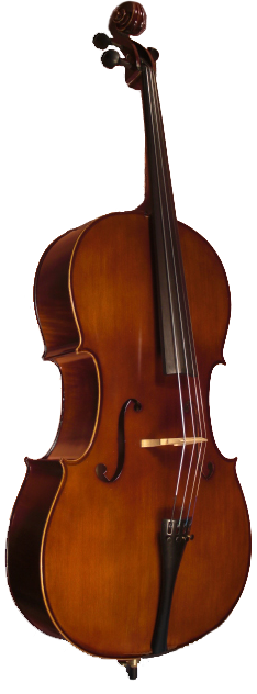 520E SM ELITE CELLO